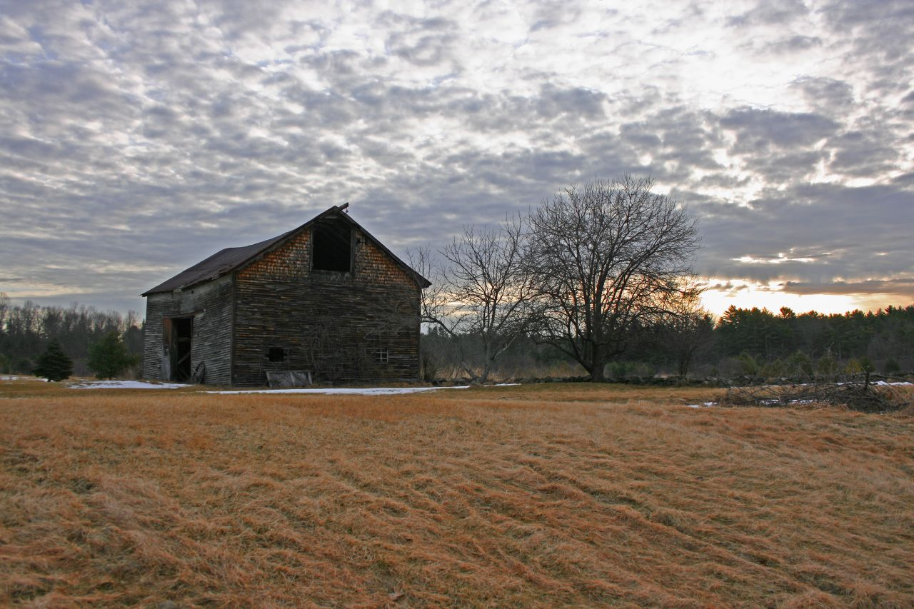 Homestead barn, field, trees, and sunrise - Photo by Tom Lambert